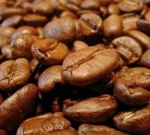 Geschichte des Kaffees
