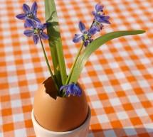 Eier-Vase